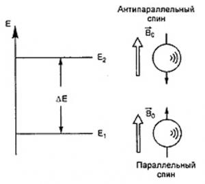МРТ-физические основы метода 2