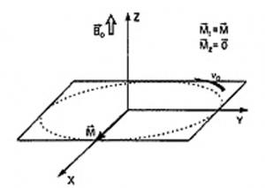 МРТ-физические основы метода 7