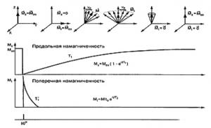МРТ-физические основы метода 9